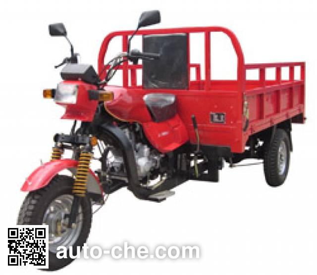Dalishen DLS200ZH-C cargo moto three-wheeler