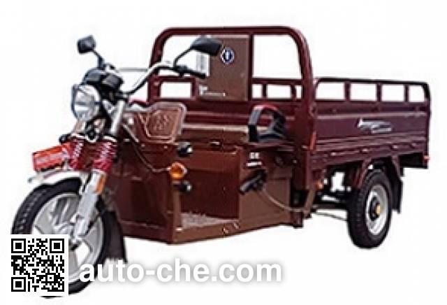 Dalishen DLS4500DZH-5C electric cargo moto three-wheeler