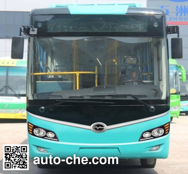 五洲龙牌FDG6103EVG1纯电动城市客车