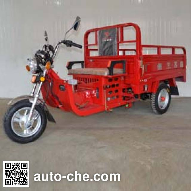 Fekon FK110ZH-B cargo moto three-wheeler