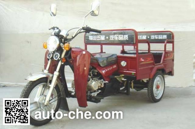 Foton Wuxing FT100ZK-2D auto rickshaw tricycle