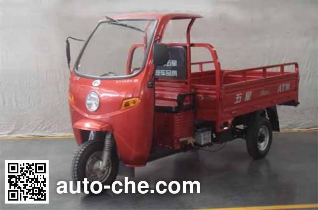 Foton Wuxing FT175ZH-9B cab cargo moto three-wheeler