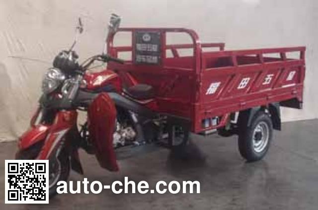 Foton Wuxing FT250ZH-13E cargo moto three-wheeler