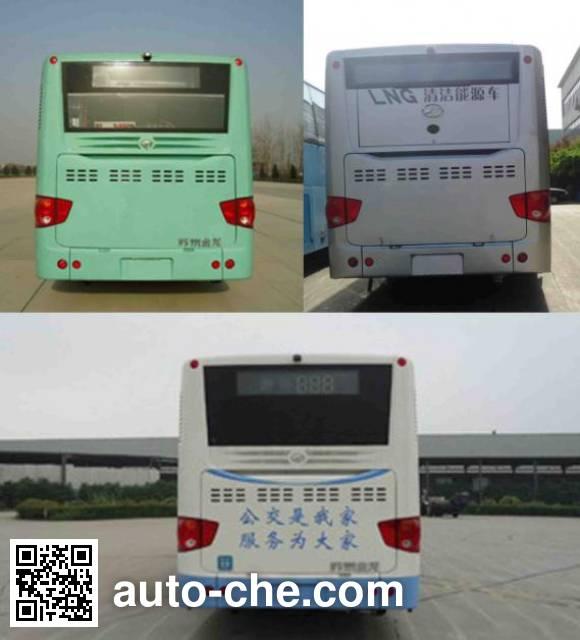 海格牌KLQ6129GAC5城市客车