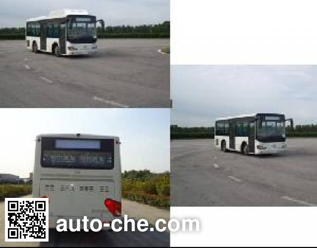 Higer KLQ6895GQC5 city bus