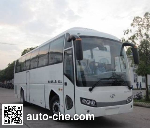 Dongyu Skywell NJL6118YN5 bus