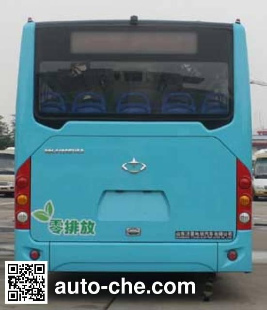 飞燕牌SDL6125EVG2纯电动城市客车