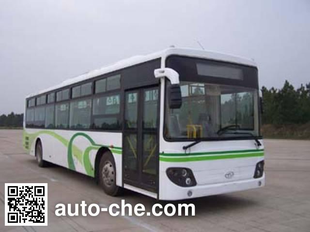 象牌SXC6120T3客车