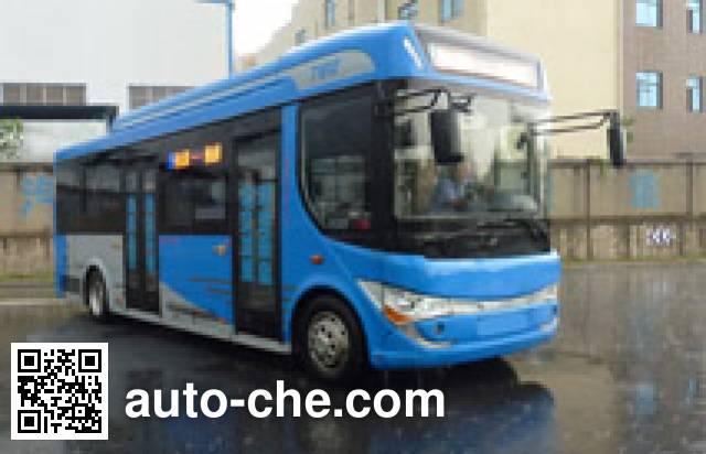 CSR Times TEG TEG6850BEV05 electric city bus