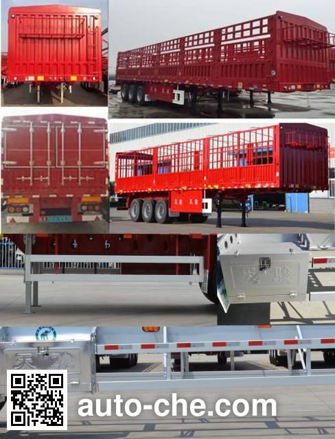 Tianjun Dejin TJV9371CCYG stake trailer