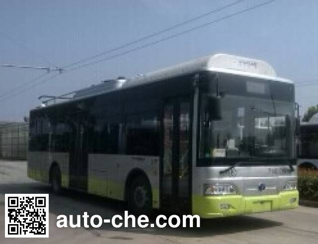 扬子江牌WG6101BEVH纯电动城市客车