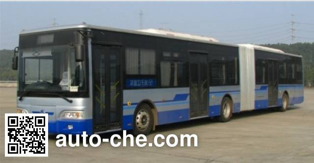 Yangtse WG6180CHM4 city bus