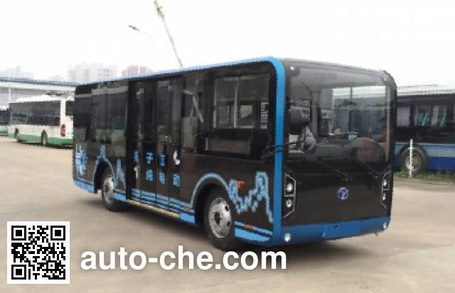 扬子江牌WG6610BEVH纯电动城市客车