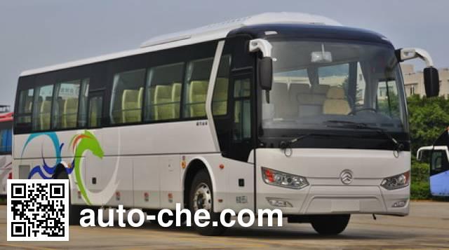 Golden Dragon XML6122J85 bus
