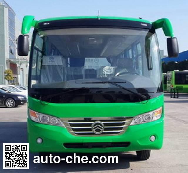 Golden Dragon XML6602J18 bus