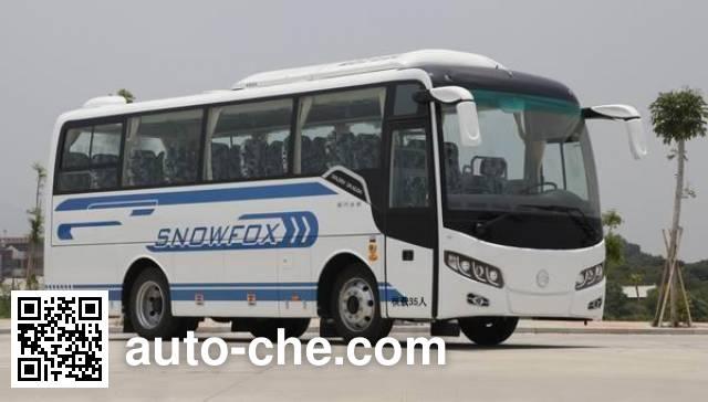 Golden Dragon XML6807J78 bus