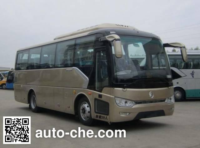 Golden Dragon XML6887J15N bus