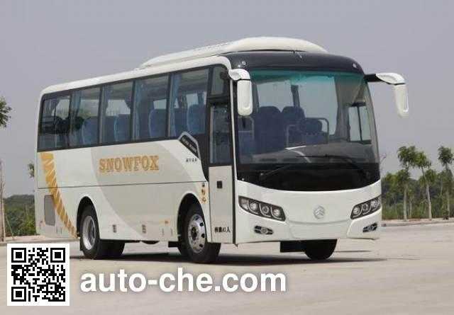 Golden Dragon XML6902J15NE bus