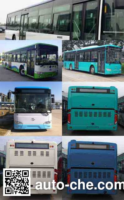 金龙牌XMQ6119AGCHEVD51混合动力城市客车