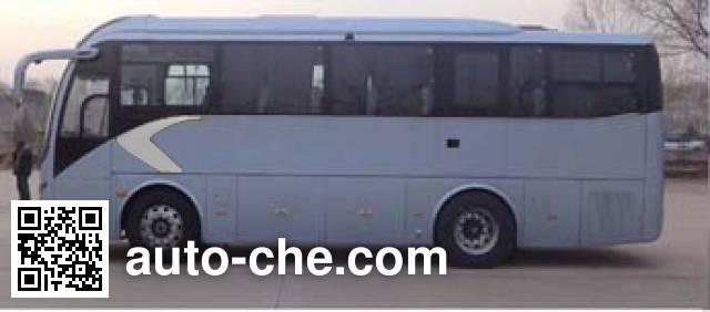 金龙牌XMQ6901AYD4B客车