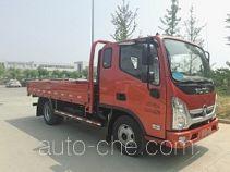 Foton BJ1045V9JD6-F2 cargo truck