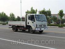 Foton BJ3046D9JBA-FF dump truck