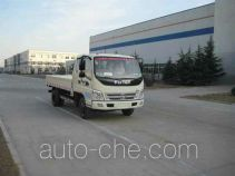 Foton BJ1049V9PEA-3 cargo truck