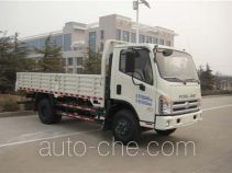Foton BJ1073VCJFG-L1 cargo truck