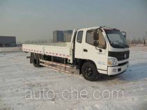 Foton BJ1139VJPEK-F2 cargo truck