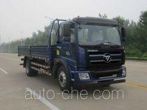 Foton BJ1145VJPEG-1 cargo truck
