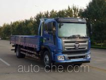 Foton BJ1145VJPEK-1 cargo truck