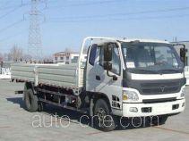 Foton BJ1159VKPEK-FB cargo truck