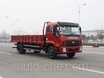 Foton BJ1165VKPEK-FC cargo truck