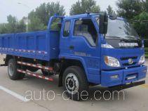 Foton BJ3095DDPFD-1 dump truck