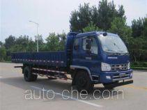 Foton BJ3165DJPFG-1 dump truck