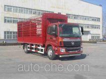 欧曼牌BJ5163CCY-XL型仓栅式运输车