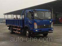 王牌牌CDW1162A1R5型载货汽车