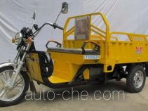 Chuanye CY3000DZH electric cargo moto three-wheeler