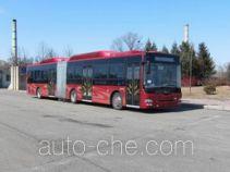 黄海牌DD6161B01N型城市客车