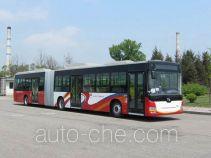 黄海牌DD6181B01N型城市客车