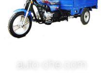 Dongfang DF110ZH cargo moto three-wheeler