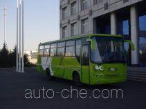 Yuanzheng DK6101C1 bus