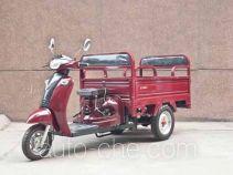 Dalong DL110ZK-C auto rickshaw tricycle