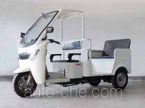 Dalong DL110ZK-D auto rickshaw tricycle