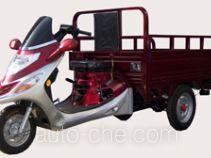 Dalishen DLS110ZH-2C cargo moto three-wheeler