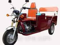 Dalishen DLS110ZK-C auto rickshaw tricycle