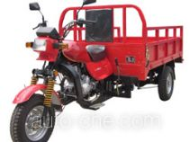 Dalishen DLS200ZH-C cargo moto three-wheeler