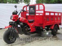 Dayang DY250ZH-7A грузовой мото трицикл