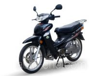 Dayang DY48Q-2D 50cc underbone motorcycle