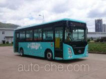 Changjiang FDE6850PBABEV01 electric city bus